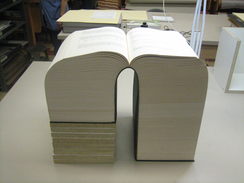 thick book!